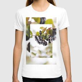 Chokeberries or aronia fruits T-shirt