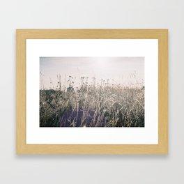 Hoarfrost Framed Art Print