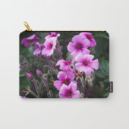 Beauty on The Rock Carry-All Pouch