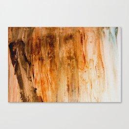 Patina Hint Canvas Print
