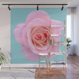 bed of roses: robin's egg blue sky Wall Mural