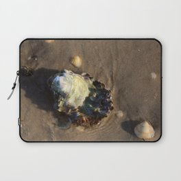 Shells in the sand 1 Laptop Sleeve