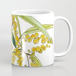 Australian Wattle Flower, Illustration Coffee Mug