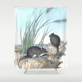 Mice in the reed overviewing the ocean Shower Curtain