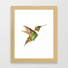 Hummingbird Magic Framed Art Print