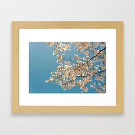 Flower photography by Evgeny Lazarenko Framed Art Print