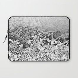 Transitions in nature part 1 Laptop Sleeve