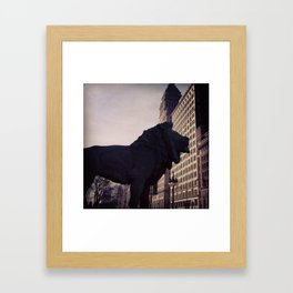Lion with a C Framed Art Print
