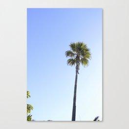 palmed Canvas Print