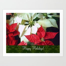 Mixed Color Poinsettias 2 Happy Holidays S6F1 Art Print