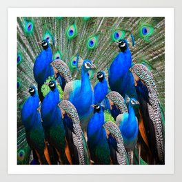 FLOCK OF BLUE PEACOCKS Art Print