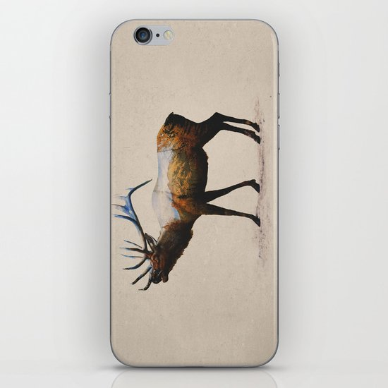 The Rocky Mountain Elk iPhone & iPod Skin