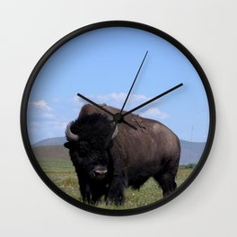 King of the Plains Wall Clock