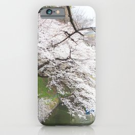 Japan's Cherry Blossom iPhone Case