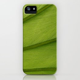 Green Leaf Texture 05 iPhone Case