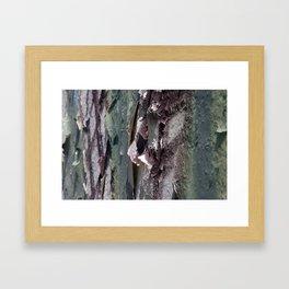 Landscape 3310C Framed Art Print