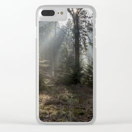 Morning Sunbeams Clear iPhone Case