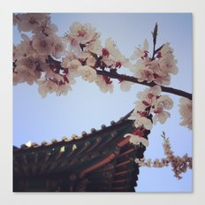 Cherry Blossoms and the Great Bell of Bosingak 2 Canvas Print