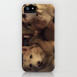 helens dogs  iPhone Case