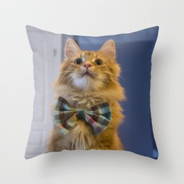Sir Pudding of Butterscotch Throw Pillow