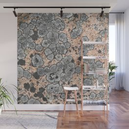 Lichen on granite = Natural abstract art Wall Mural