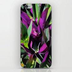Purple and Green iPhone & iPod Skin