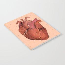 Anatomical Human Heart - Peach/Pink Version Notebook