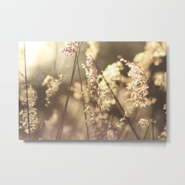 Moving in the Wind Metal Print