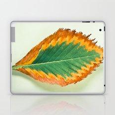 Transition Laptop & iPad Skin
