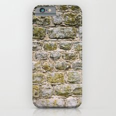 Mossy rock wall iPhone 6 Slim Case