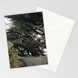Point Reyes Tunnel of Trees Stationery Cards