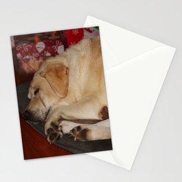 A Christmas Nap Stationery Cards