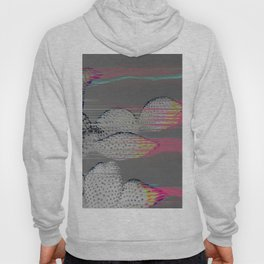 The Cactus Interference Hoody