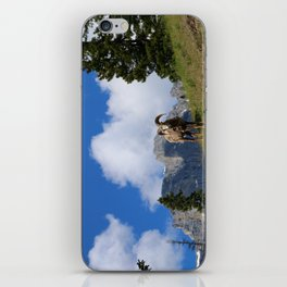 Ram Against Mountain Backdrop iPhone Skin