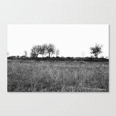 winters edge Canvas Print