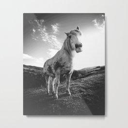 Horse (Black and White) Metal Print