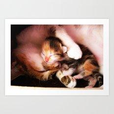 Cats hug Art Print