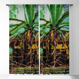 FAVORITE GREEN AGAVE & ROOTS GREENHOUSE  PHOTO Blackout Curtain