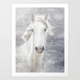 cheval de la Camargue Art Print