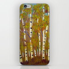 Birch trees-3 iPhone & iPod Skin