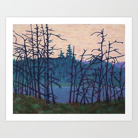 Algonquin Wetland, Algonquin Park Art Print