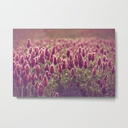 Clover Patch // Flowers Metal Print