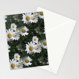 Many Daisies Stationery Cards