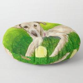Beautiful Sage Floor Pillow