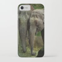elephants iPhone & iPod Cases featuring Elephants  by Guna Andersone & Mario Raats - G&M Studi