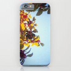 The Red Berry Tree (An Instagram Series) Slim Case iPhone 6s