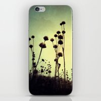 the walking dead iPhone & iPod Skins featuring Walking Dead by Olivia Joy StClaire
