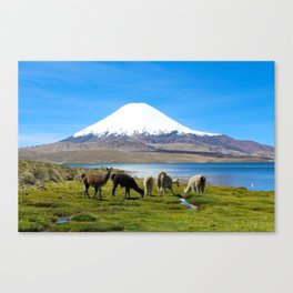 Chungara Lake, Chile Canvas Print