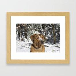 Harper's First Snow  Framed Art Print