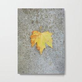 Yellow Leaf on Grey Background Metal Print